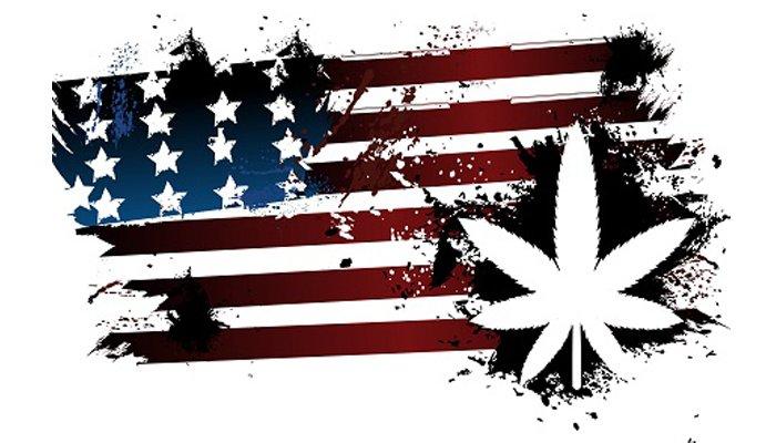 Medical Marijuana Dispensaries Planned for Boston
