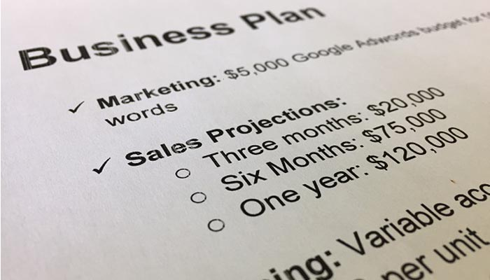 Include These 5 Details in Your Startup Business Plan