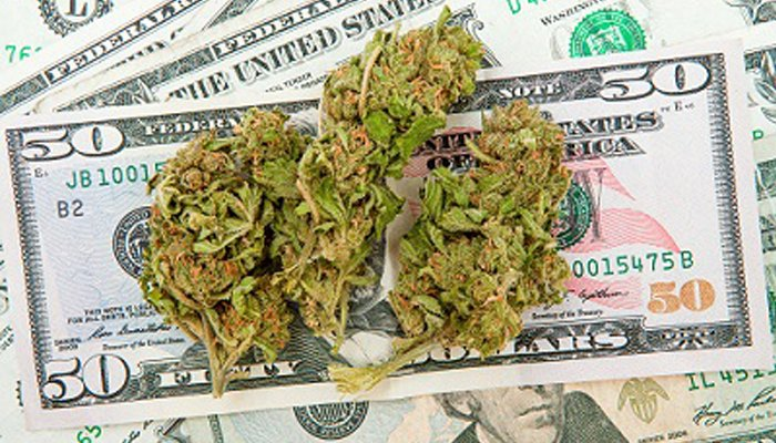 Marijuana Schools Teach Growing, Selling, Investing
