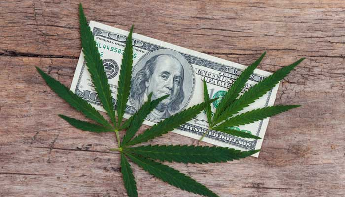 Cannabis Payment Processing