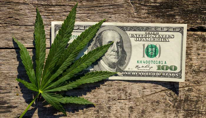 Midterm Elections Highlight the Need for Cannabis Payment Solutions